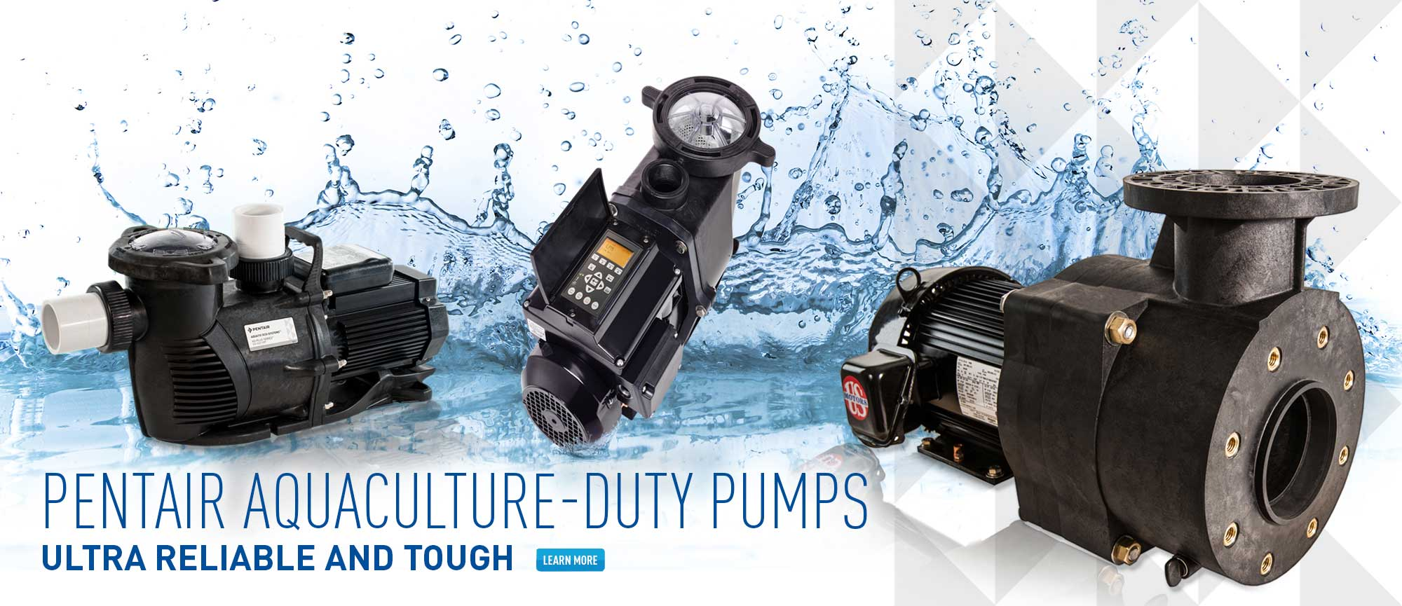 Pentair Aquaculture-Duty Pumps
